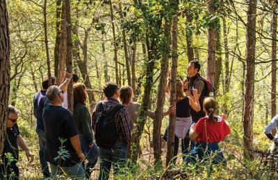 trekking priorat ruta a pie