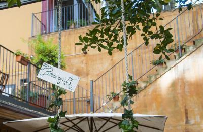 el jardí de l'hotel hostal sport de falset