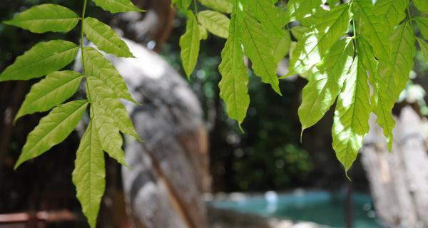 Turisme sostenible Hotel hostal Sport al Priorat