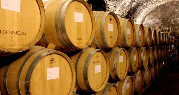 Cellers Scala dei_Cata de vinos codorniu en el Priorat